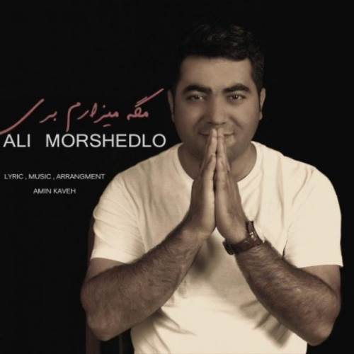مگه میزارم بری از علی مرشدلو