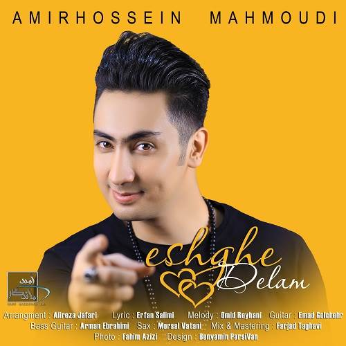 عشق دلم از امیرحسین محمودی