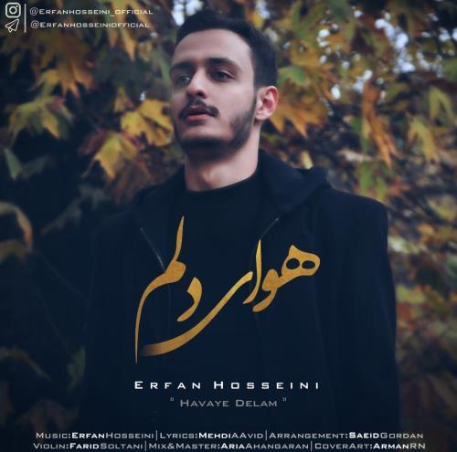 هوای دلم از عرفان حسینی