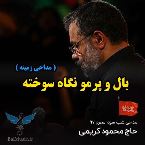 بال و پرمو نگاه سوخته از محمود کریمی