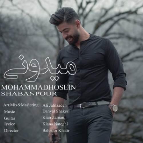 میدونی از محمدحسین شعبانپور