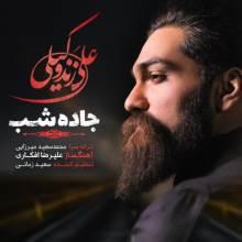 جاده شب از علی زند وکیلی