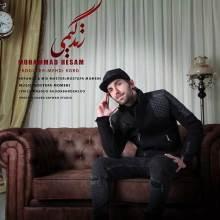 زندگیمی از محمد حسام